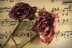 sheet-music-944796_960_720
